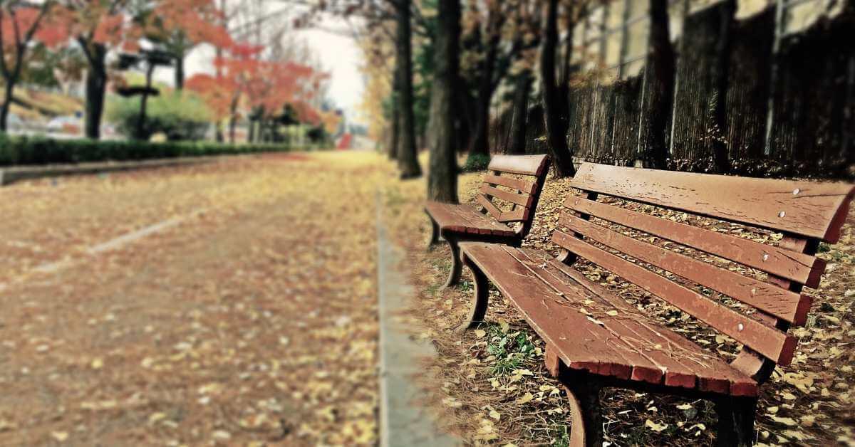 Klupice u beogradskom parku