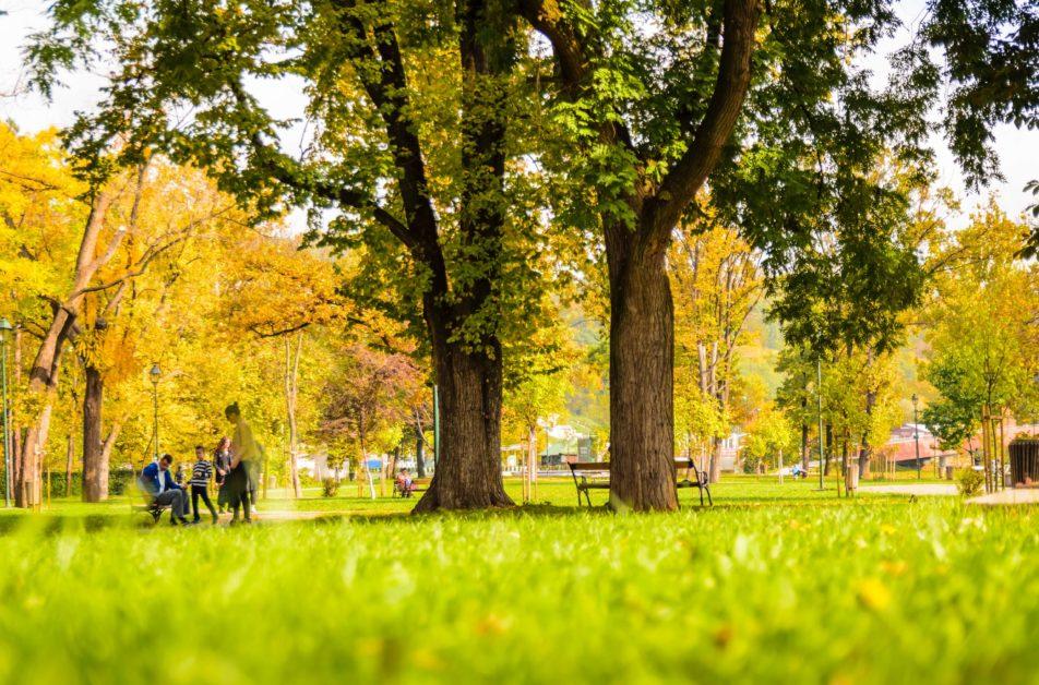 park i zelenilo