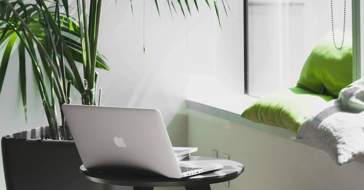 Kancelarija sa dosta biljaka
