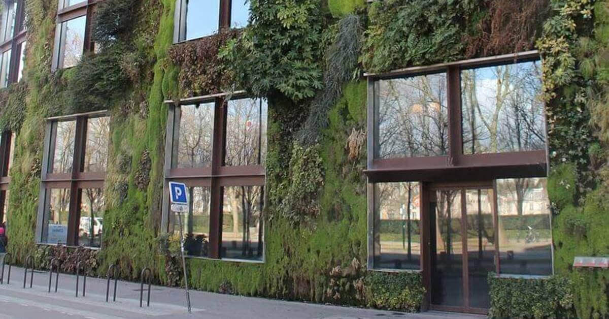 Zgrada prekrivena biljkama